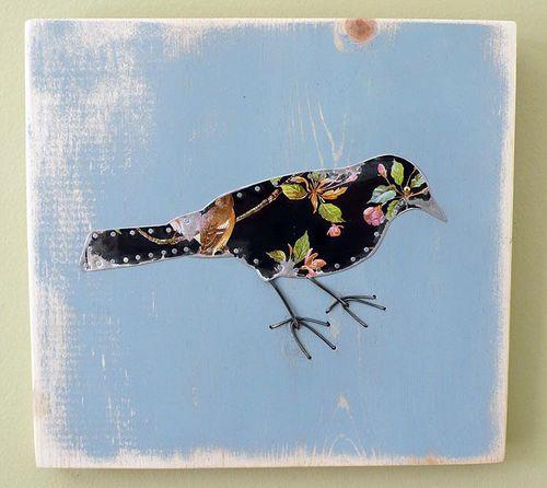 Blacktinbird