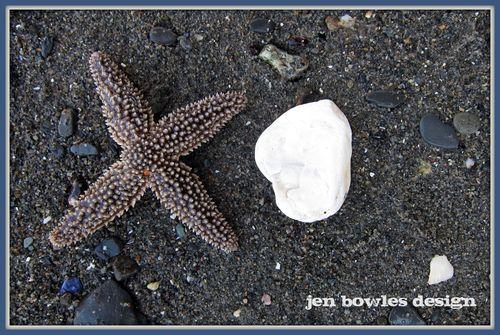 Starfishxo