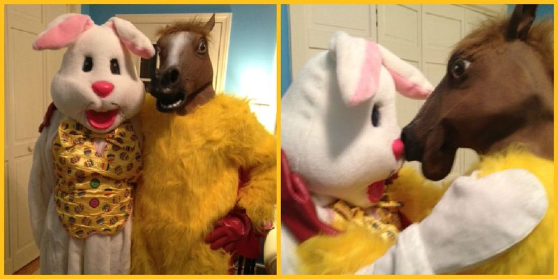 BunnyHickenCollage
