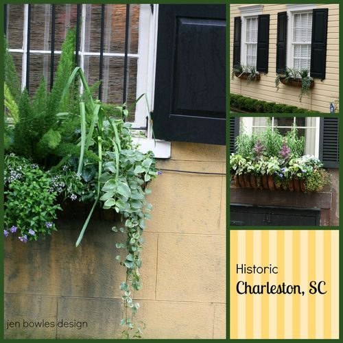Charleston Window Box collage 1