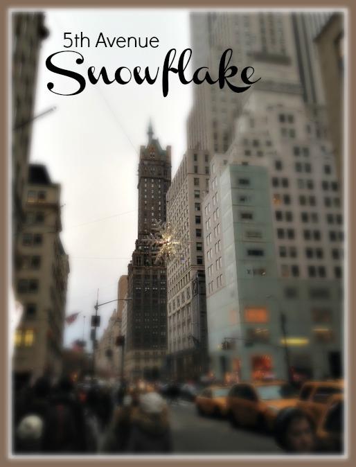 5th Snowflake