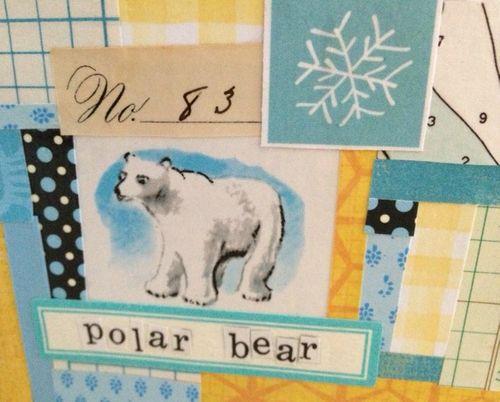 PolarBearcloseup