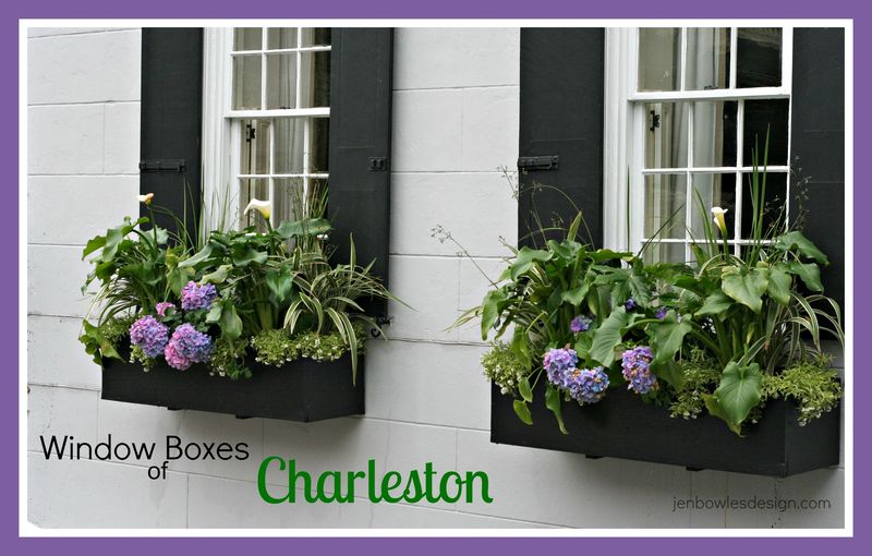 Window Boxes of Charleston at Jen Bowles Design