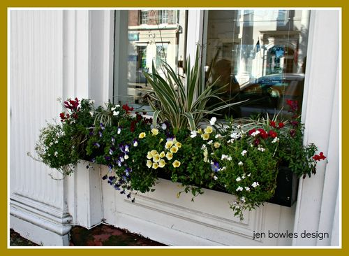 Broad Street Charleston window box