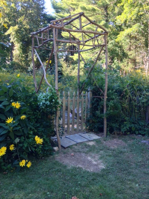 rustic diy arbor from tree saplings