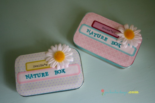 Nature Boxes from altoid tins  Jen Bowles Design